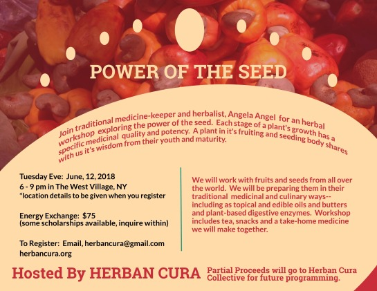 Power of the Seed June 12, NY updated